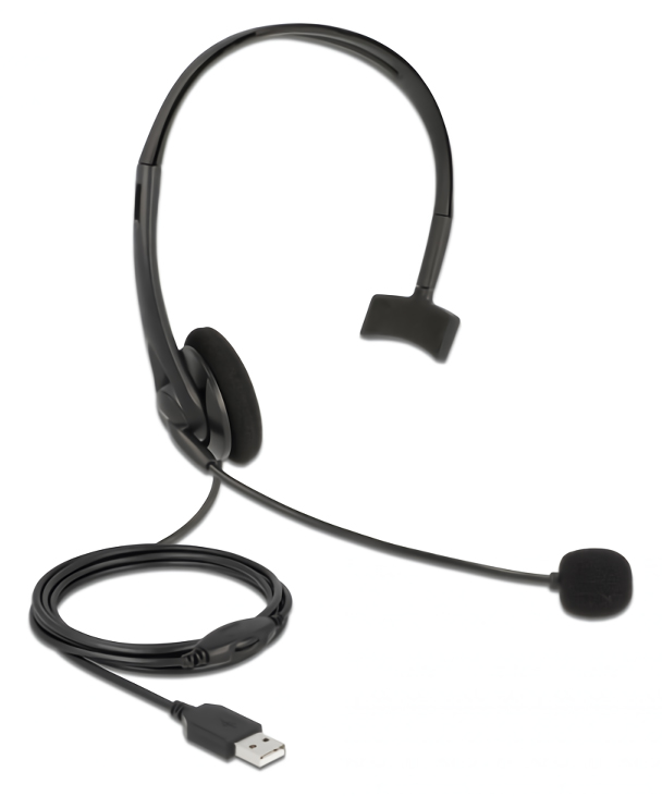 DELOCK headphones με μικρόφωνο 27177