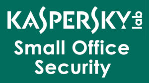KASPERSKY Small Office Security ESD